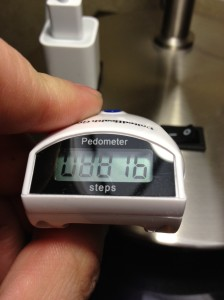 Pedometer Day Two